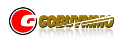 门户网站系统:Gobuymmo
